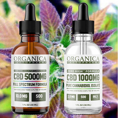 Pure CBD Oil for Pain