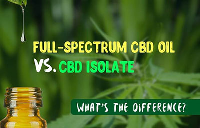 full spectrum CBD vs pure CBD isolate